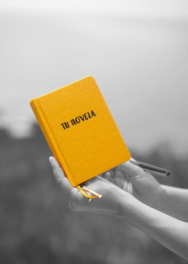 Libreta amarilla Tu Novela Más de 50 fichas para escribir tu novela